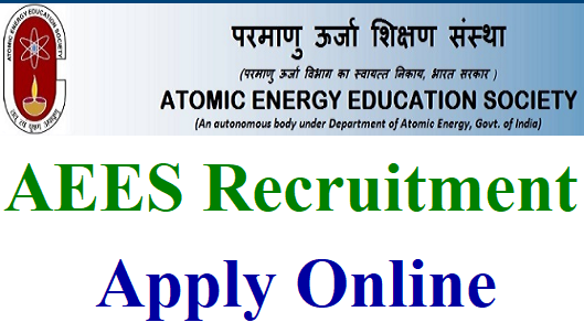 primary education online application form