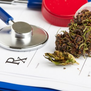 gp applications for cannabis use